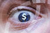 Human eye with dollar or money symbol inside