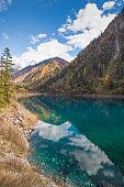 Nature view Amazing view of crystal clear water of the Five Flower Lake among autumn woods forest and beautiful scenic in Jiuzhaigou nature ( Jiuzhai Valley National Park), China