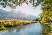 Wide angle view in The Milford Sound fiord Fiordland national park New Zealand in south island new zealand