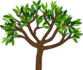Cartoon tree with green leaves isolated on white background