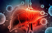 Hepatitis virus with human liver