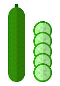 Whole cucumber with round slices vector icon flat isolated