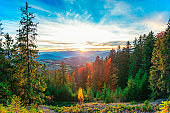 Morning sun illuminating rolling hills with light rays