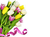 Colorful tulip flowers tied with pink satin ribbon