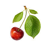 Red weet cherry with green leaves