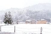 Shirakawa-Go of vintage japanese village in winter season with white snowing cover, Shirakawago Gifu, Japan is historic Japanese gassho villages, Travel traditional landmark famous world heritage