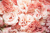 spring texture tender pink artificial flowers close-up