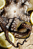 Raw octopus on a plate with lemons ready for preparing