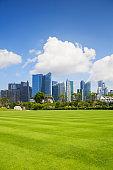 Landscape with Singapore financial district