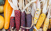 Fresh autumn vegetables and corn at local food market