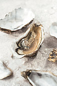 Fresh oysters in  the ice background. Fresh french seafood