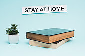 Flowerpot with money plant near card with stay at home lettering and books on blue background