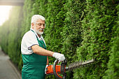 Man wearing ear and face protection cutting hedge.