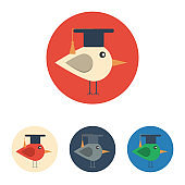 Flat icon with bird with graduation hat