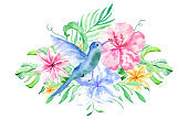 Watercolor bouqet with tropical flowers, leaves and hummingbird. Hawaiian exotic illustrations for greeting card, wedding, wallpaper