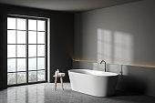 Grey bathroom corner with tub
