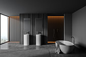 Panoramic grey and wooden bathroom