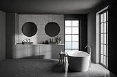 Modern grey bathroom, tub and sink