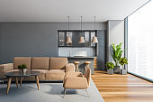 Grey living room and kitchen with sofa