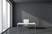 Gray loft CEO office interior