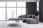 Gray living room interior with sofa