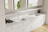 White bathroom corner with double sink