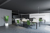 Consulting company open space office