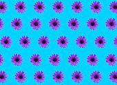 Beauty  flowers pattern background