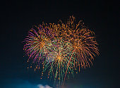 Colorful fireworks on the black sky background,Firework - Explosive Material, Firework Display, Cut Out, Black Background