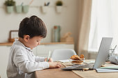 Cute Little Boy Studying at Home