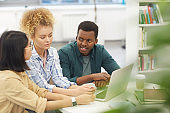 Multi-Ethnic Group of People Studying in Library