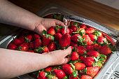 Washing strawberries  underwater in the kitchen sink