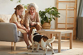 Happy Grandmother Playing with Pet Dog