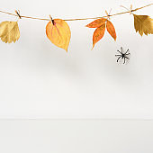 Halloween backdrop with spider and floral garland on table wall background