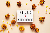 Lightbox with Hello Autumn text on pastel background with golden autumn flowers marigolds