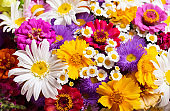 bouquet of various summer flowers as background