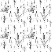 Hand drawn herbal seamless pattern with plantain. Vector illustration in sketch style