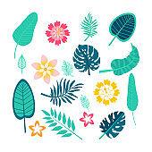 Vector set of tropical leaves. Palm leaf, banana leaf,  flowers. Jungle trees.Botanical floral illustration