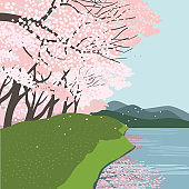 Cherry blossoms at the river flat vector landscape