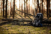 view of sports backpack that lies near fallen tree in the forest
