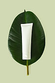 White plastic tube mockup for cream, moisturizer, lotion, facial cleanser or shampoo on tropical leaf on light green background. Organic natural beauty skin care product. Dermatology and cosmetology