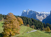 Scenic view of sunny valley below Swiss Alps