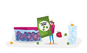 Young Woman Carry Package with Frozen Green Peas near Container with Iced Berries. Healthy Food, Iced Vegetables as Source of Vitamin and Health, Eco Products. Cartoon Character Vector Illustration