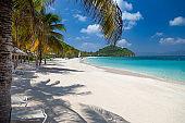 palm trees on Deadman's beach, Peter Island