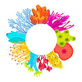 Vector circle frame with corals. Colorful sea or ocean life
