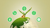 Sustainable development, ecology and environment protection concept, globe with plant and sustainability icons, renewable energy, people and natural resources, recycling