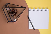 Top view on an empty diary and pen, glass florarium with a pine cone on a combined tan background, place for text