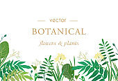 Beautiful postcard or banner design with vector flowers and plants in vector