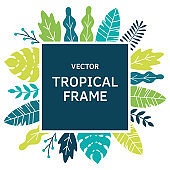 tropical leaves and plants sguare frame