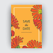 Hand drawn close-up Chrysanthemum flower artistic vector illustration. Botanical wedding flowers. Petals painted in red color. Floral trendy pattern Greeting card invitation orange background